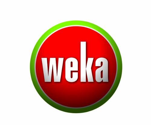 Weka Gartenhaus, Sparset Premium28 DT, V60, DS rot/braun, 300x320x251 cm, 132.2525.40109 - 2