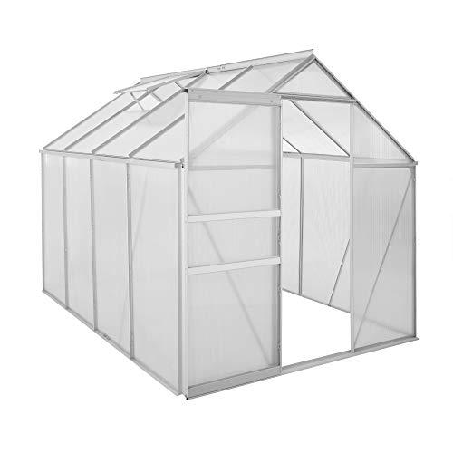 Zelsius - Aluminium Gewächshaus, Garten Treibhaus in verschiedenen Größen, mit Hohlkammerstegplatten, wahlweise mit Stahl-Fundament-Rahmen (190 x 250 cm - 4 mm Platten, ohne Fundament)